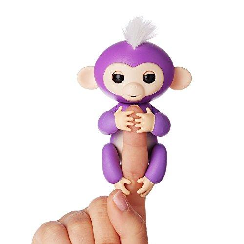 purplemonkey